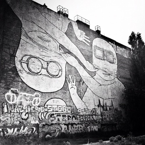 Unmask #igersberlin #catinberlin  (Taken with instagram)