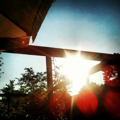 Great weather in Holland (Taken with instagram)