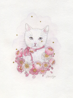 white kitten watercolour, gold acrylic and graphite  by Calliope Bridge