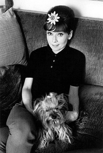 audreyhepburn-a-style-icon:  Audrey Hepburn and Mr. Famous in 1960's.