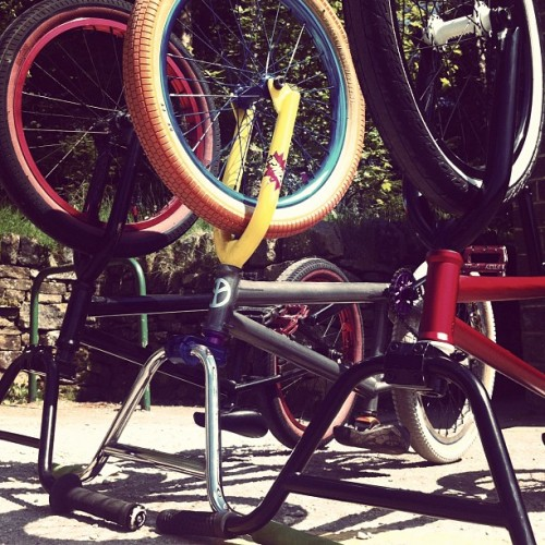 deemonhay:  Nice day for #bmx (Taken with instagram)