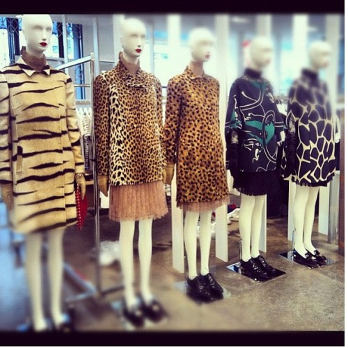 Valentino's 50th anniversary capsule collection @ Colette Paris (via @stephaniefarran). 50 years of elegance, classy and timeless beauty. #valentino #valentinogaravani #paris #colette #hautecouture #mode #fashion #animalier #historyoffashion (Scattata con Instagram presso Colette Paris)