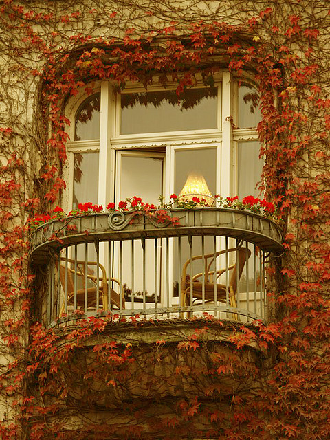Ivy Balcony, Paris, France photo via lostinthe