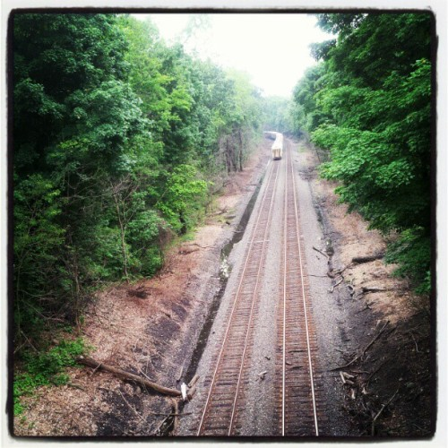 #train #tracks  (Taken with Instagram at Plum Point Park)