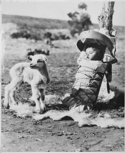 H. Armstrong Roberts, Navajo papoose on a cradleboard with a lamb approaching, Window Rock, Arizona, 1936. Source: National Archives and Records Administration