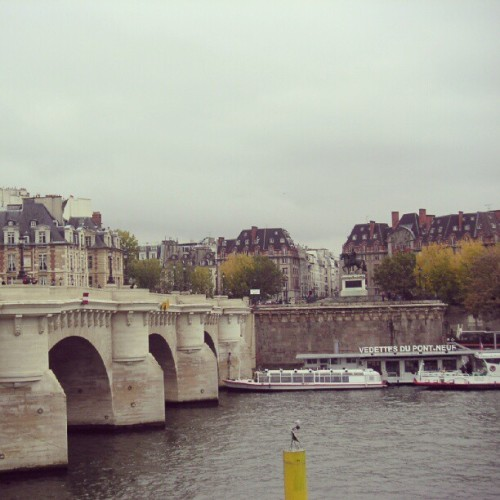 Du #pontneuf #bridge #paris #France  (Taken with instagram)