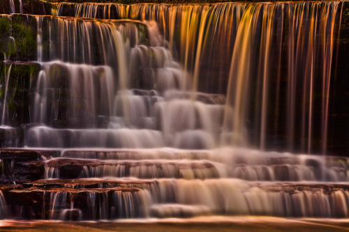 Liquid Gold - Aysgarth Falls at Sunset (by Steve Thompson images)