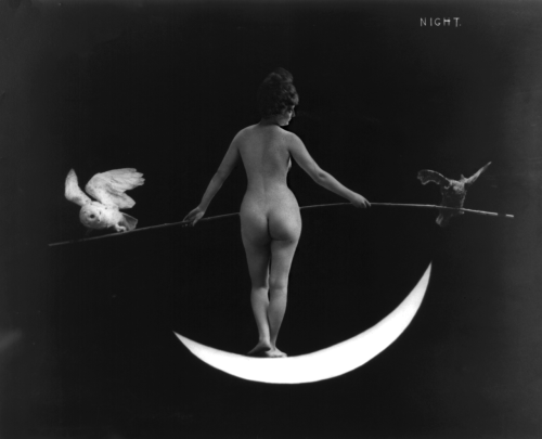 Night goddess nude, standing on crescent moon with a pole, balanced by an owl and night hawk, c.1895 from Early Pictures, originally from LOC