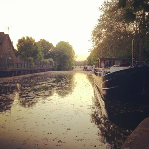 Regents Canal at dusk.  (Taken with instagram)