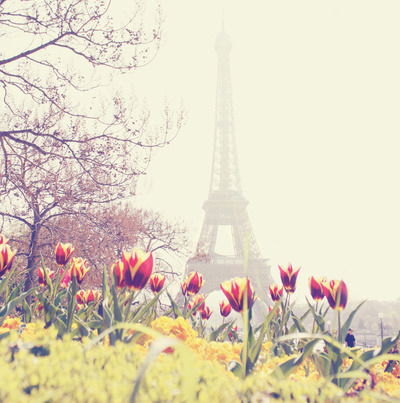 Take me to Paris.
