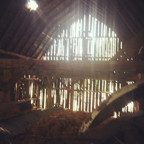 BARN!!! (Taken with instagram)
