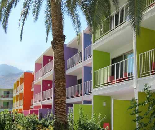 jessicaantola:  Jessica Antola, Saguaro Hotel, Palm Springs. The old Holiday Inn in Palm Springs just got a facelift, and what a difference a paint job can make! This palette of 12 vibrant tones was inspired by the colors found in native desert wildflowers.