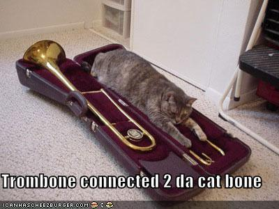 What is it about cat's and trombones?
