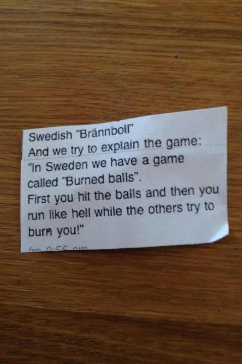 ifangirllunalovegood:  (Not my picture)Swedes are the sanest people in the world!