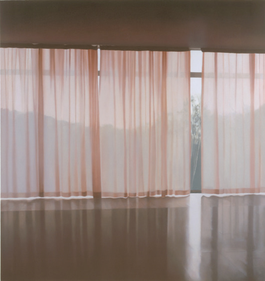 Veil 10 (2001), Oil on linen, by Paul Winstanley