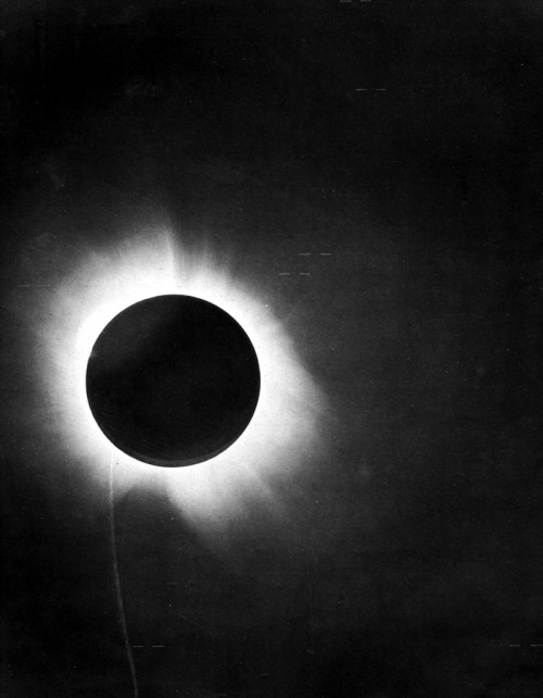 scienceetfiction:  Eclipse of May 29, 1919,  Picture from the report of Sir Arthur Eddington on the expedition to the island of Principe (off the west coast of Africa) to verify Einstein's prediction.  Positions of star images within the field near the sun were used to verify Albert Einstein's prediction of the bending of light around the sun from his general theory of relativity. via wikipedia