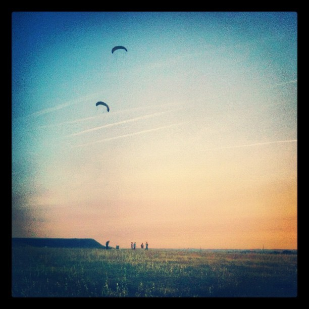 Kites! (Taken with instagram)