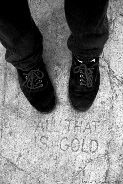 """ALL THAT IS GOLD"" © Conor A. Daniells. 2012. All Rights Reserved."