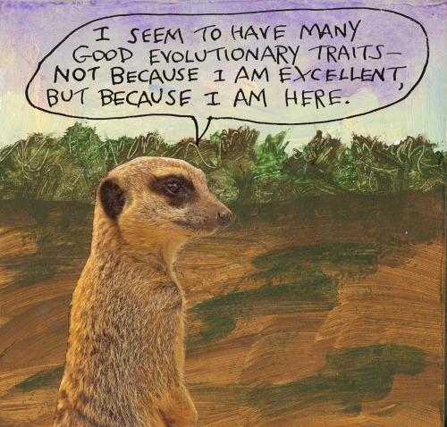 stoicmike:  Thusly I refute Intelligent Design. - Michael Lipsey