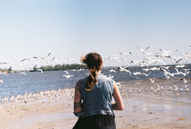 untitled by Brittany Nicol Fabry on Flickr.