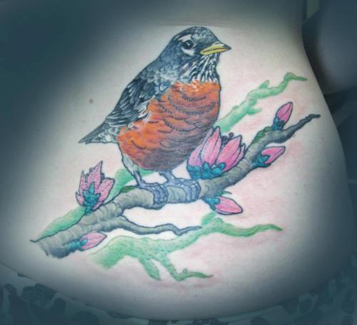 fuckyeahtattoos:  My robin cover-up (of another robin). I got the first one done right out of high school and it was looking a little rough. My wonderful artist re-worked my tattoo and created this beautiful new robin. I chose the robin because I'm from Michigan (state bird, the flowers are apple blossoms for MI as well) and I love the renewal that the robin symbolizes with its arrival each spring. Freshness and new beginnings. Done by Solomon Trofatter at Spash of Color Tattoos, East Lansing, MI. Photo credit Solomon Trofatter.