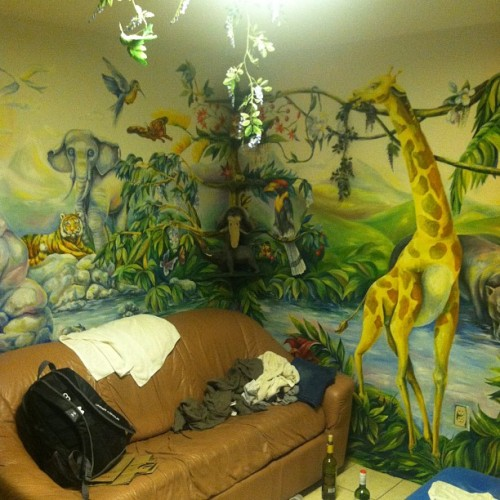 Schwanke's jungle room. Win. (Taken with instagram)