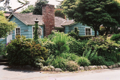 21vines:  Carmel, California (by 97213)