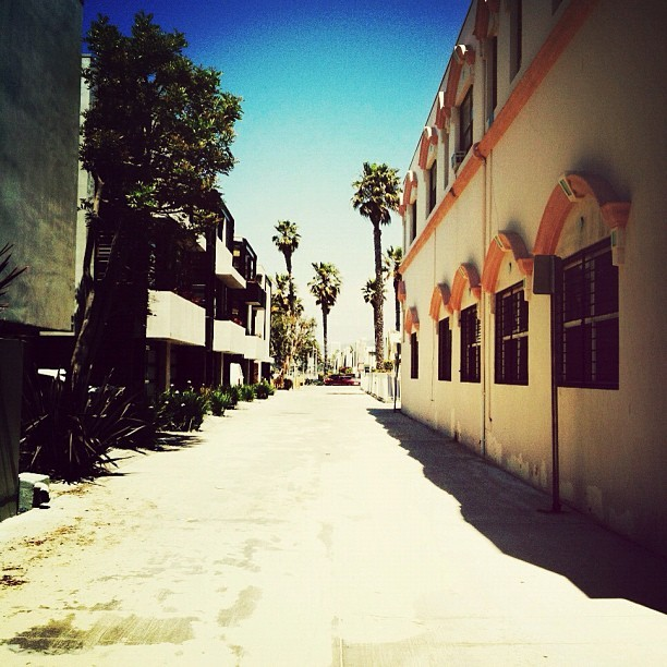 #la #venice  (Taken with instagram)
