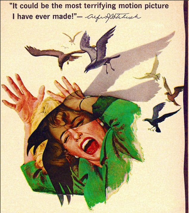 The Birds Movie Ad Poster 1963
