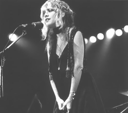 Dear Stevie Nicks, I love you so much!
