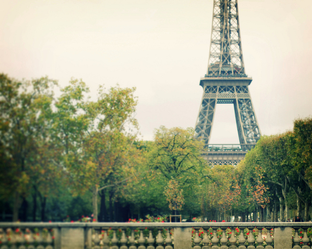 la tour eiffel (by liz.rusby)