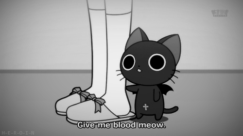 Give me blood meow :3
