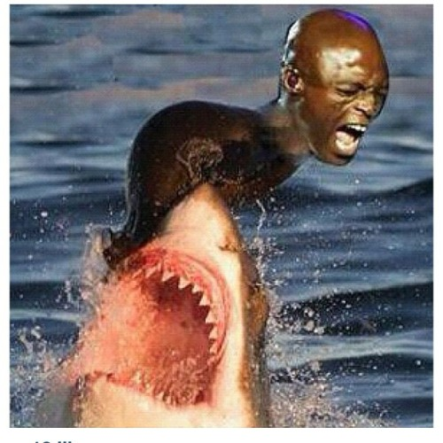 HAHAHAHAHA fuck I'm dieing 😂😂 I love these lool #lol #soofunny #seal #dieing look @dearbreak  (Taken with instagram)
