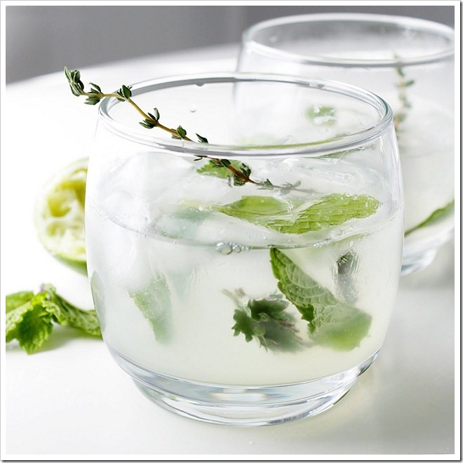 beach-houses:  Spring Herb Mojito