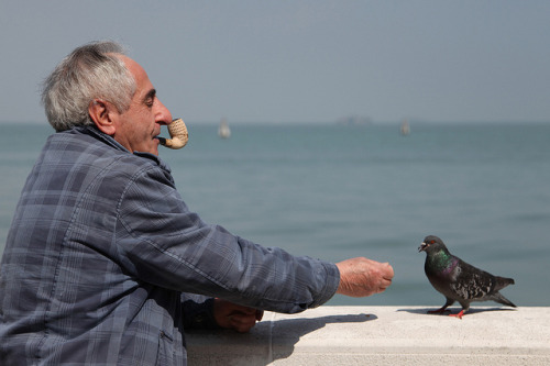 venice 23 - the old man and the sea by Anders Öfverström on Flickr.