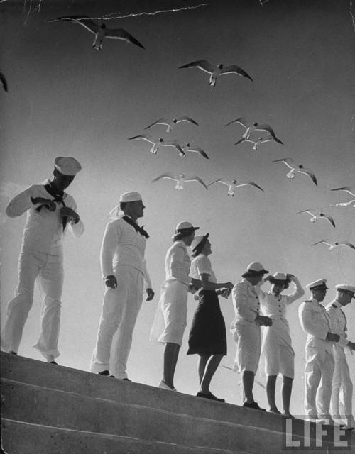 Seagulls flying above group of sailors and waves | Photo by Alfred Eisenstaedt for LIFE magazine, 1943 | Corpus Christi, TX Happy Memorial Day! We'd like to dedicate this post to all of the brave men and women who have served in this country's armed forces, but as advocates for open access to clean water, we have a special place in our hearts for cute sailors. The uniform doesn't hurt either!Enjoy the holiday, everyone!