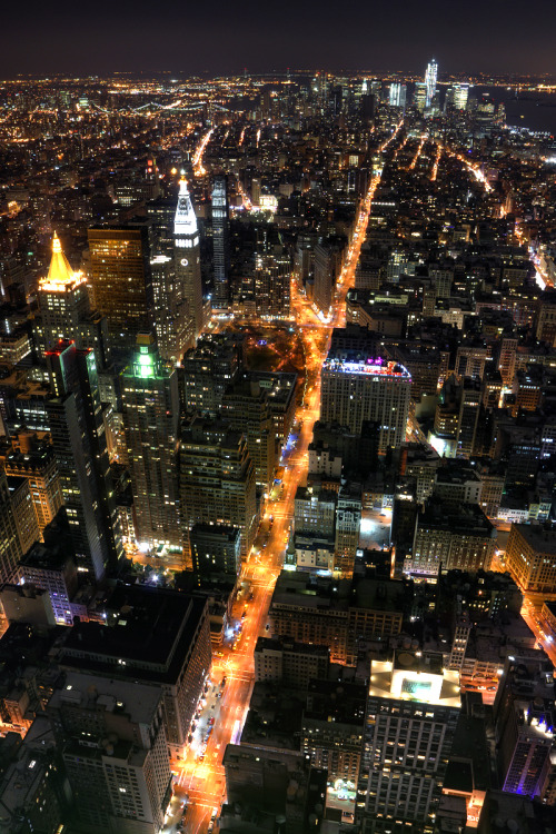 off-my-rocker:  Manhattan Night Lights (by MarcelGermain)