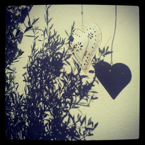 The effects of sunshine #shadow #shadows #heart #olive #tree #white #monochrome #elliebirch #sunshine (Taken with instagram)