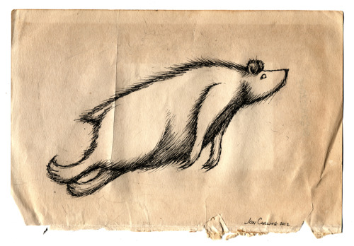 joncarling:  magic bear