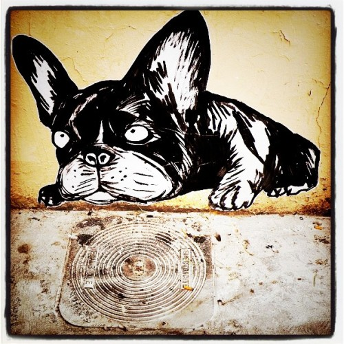 TheUnderdog(StreetArt) (Taken with instagram)