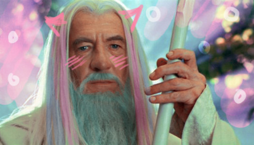 Gandalf? Yes…that's what they used to call me. Gandalf the Grey. That was my name. I am Gandalf the Kawaii, now.  Aaaaand I just found my new desktop wallpaper!! :D :D :D I can't stop laughing at this!! lolol