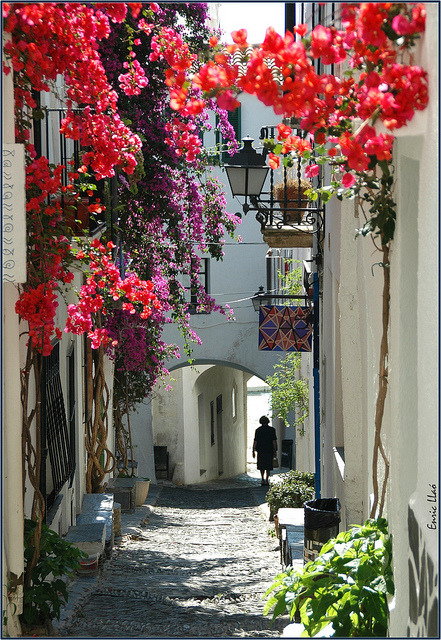 bluepueblo:  Flowered Passage, Catalonia, Spain photo via tolove