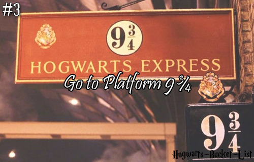 #3 Go to Platform 9 3/4  Reblog this if you would love to go to Platform 9 3/4!