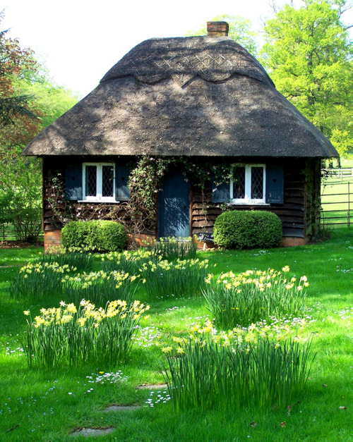 missingsisterstill:  small/so cute/hobbit house or cottage