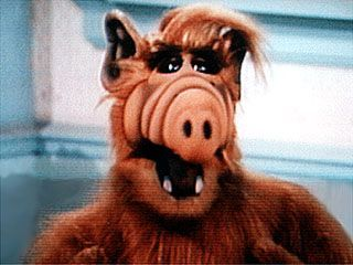 "Read our latest blog post about the ""Resurrection of Alf."" Then, check out Hark's collection of Alf sound bites to find your favorite one! http://www.hark.com/blog/2012/05/the-resurrection-of-alf/"