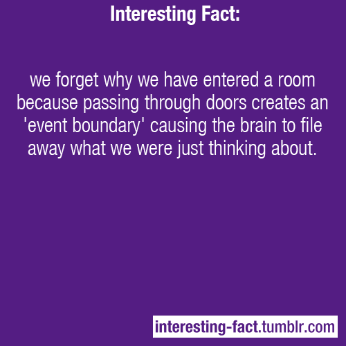 interesting-fact:  we forget why we have entered a room because passing through doors creates an 'event boundary' causing the brain to file away what we were just thinking about. - Source