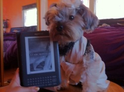 Even puppies love Starcrossed, visit our blog to find out more about the yabooktwins :)