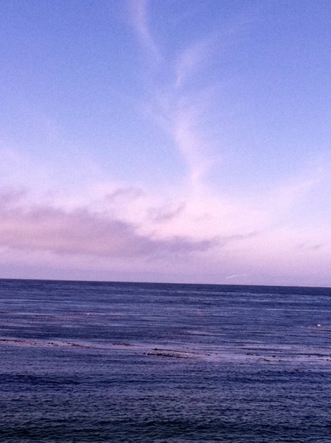 Blue. Photo: Monterey,CA. 5/21/12. Karen Glosser.
