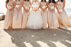 thekaycho:  i freaking LOVE weddings <3