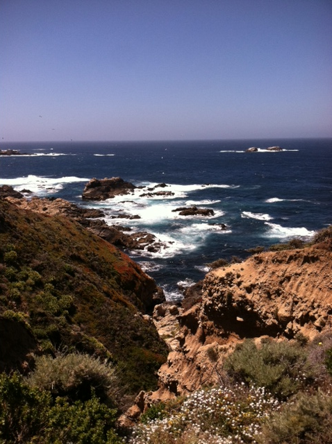Highway 1, between Carmel and Big Sur.  Photo: 5/23/12. Karen Glosser.